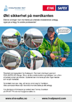 EIVA-SAFEX AS – Hvalpsund Safety System